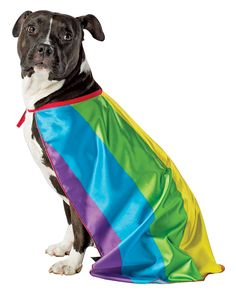 032a38c1d3  5015 Assorted Rainbow Flag Cape Dog - The Rainbow Flag Cape Pet Costume  includes a