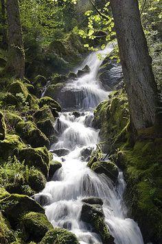 Vallée de Munster, cascades du Stolz Ablass
