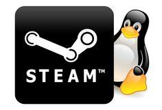 Instalar Steam en Ubuntu 14.04/13.10/Linux Mint 16 derivados