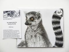 Ring-Tailed Lemur - Lemur catta Drawn as an original piece for my 2017 Earth's Treasures Calendar, this original drawing is based upon a photograph taken of one of the beautiful Ring-Tailed Lemurs at Rome Zoo. Photo taken by Vanessa Grundy. The piece measures 21.0cm wide by 17.7cm high. This will be carefully packed in a study cardboard box. I always try to send items out the next working day after payment has been received, where possible. All items are sent by tracked mail. Delivery cost…