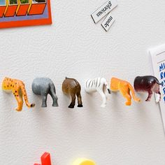 Animal Tail Magnets