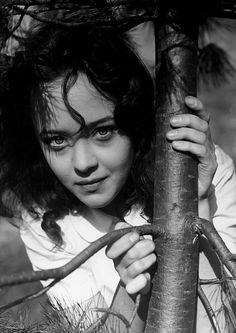 """Nora Mäkinen """"Laulu tulipunaisesta kukasta"""" (1938)"""