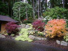 pacific northwest landscaping design