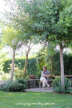 Best Weidenpavillon Weiden flechten Willow tree Sitzplatz Schatten DIY Gartengestaltung