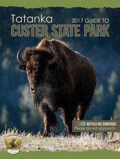 Where the buffalo roam  Custer State Park  13329 U.S. 16A  Custer, SD  open daily 9-4