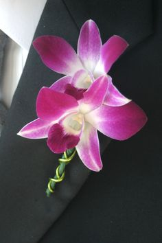 dendrobium or radiant orchid buttonhole