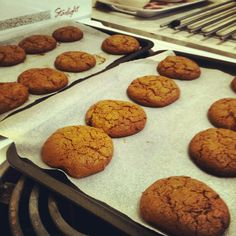 Ginger biscuits.