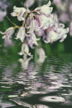 'Frühlingswasser' von Chris Berger bei artflakes.com als Poster oder Kunstdruck $7.01