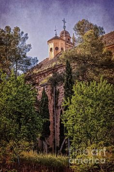 Granada Monastery - Joan Carroll  via @joancarroll #spain #spaintravel #granada #monastery