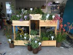 Vertical garden made using free wine crates and a few extra pine boards. Seen at SF Master Gardener Booth, Bay Area Maker Faire.