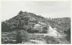 Next To Laingholm You Have Titirangi Nz History, Auckland New Zealand, Creativity, Projects, Pictures, Travel, Outdoor, Log Projects, Photos