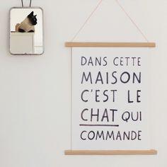 Poster Cat Manifesto