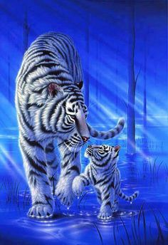 Fractal Tiger//. Absolutely Beautiful!