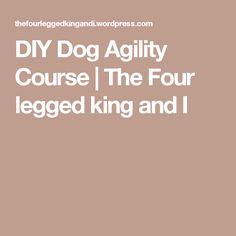 DIY Dog Agility Course | The Four legged king and I