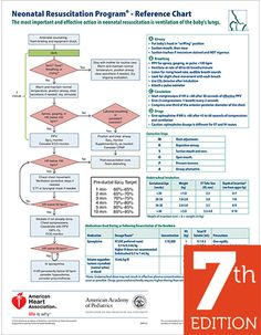 NRP Wall Chart, 7th Edition - AAP