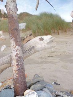 Beach Art Shell Island, Beach Art, Camping, Campsite, Campers, Tent Camping, Rv Camping