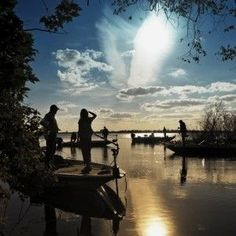 New York Mets Gone Fishin' in Florida Fishing Basics, Fishing 101, Fishing World, Going Fishing, Fishing Reels, Fishing Lures, Fly Fishing, Fishing Tackle, Fish Crafts