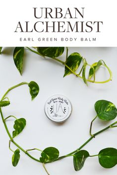 Urban Alchemist Earl Green Body Balm Review Green Beauty | Green Beauty Products | Natural Beauty | Natural Beauty Products | Beauty Tips | Skincare Tips | Skincare