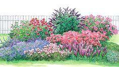 Schmetterlingsgarten - Seite 2 - Mein schöner Garten Das etwa 2,50 x 4 Meter große Schmetterlingsbeet wartet nicht nur mit zwölf verschiedenen Nektarpflanzen für Schmetterlinge auf – dank seiner lang anhaltenden Blütezeit vom Frühling bis zum Herbst bietet es auch dem Auge etwas. Die Zeichnung zeigt das Beet zum Blütenhöhepunkt im September. Der Blütenreigen beginnt aber schon im April/Mai mit Flockenblume, Malve, Schleierkraut und Blaukissen. Weiter geht es im Sommer mit Katzenminze…