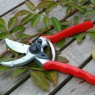 Tools of the Trade: Jardin japonais Outils Gardenista