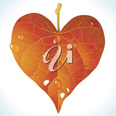 iCLIPART - Clip Art Illustration of a Fallen Red Leaf in the Shape of a Heart
