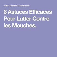 6 Astuces Efficaces Pour Lutter Contre les Mouches.