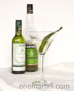 Cucumber Vodka Martini {with cucumber infused vodka} - http://www.jellypin.com/cucumber-vodka-martini-with-cucumber-infused-vodka/