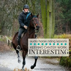 Lateral Movement; Leg Yielding | Audio Horse Riding Lessons