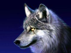 digital-wolf-drawing.jpg (1024×768)