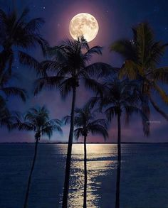 If you listen carefully the silence . is beautiful! Moon Pictures, Beach Pictures, Nature Pictures, Beautiful Pictures, Beautiful Moon, Beautiful Beaches, Moon Photography, Sunset Wallpaper, Sky Aesthetic