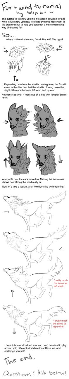 hey guys! so i decided to do this tutorial because i wanted to share how fur and wind interact. i hope this is helpful, and if you have any questions or anything, feel free to ask! next i'll be doi...