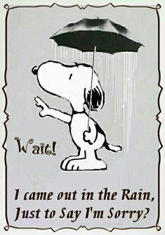 Snoopy.  I'm sorry