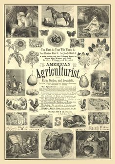 ARTEFACTS - antique images: Farm Journal — for personal use only!