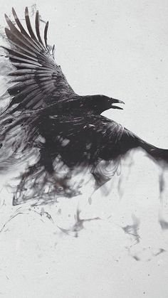 Black Smoke Crow ♥g♥ Trendy Tattoos, Black Tattoos, Body Art Tattoos, Tatoos, Black Bird Tattoo, Sleeve Tattoos, Fox Tattoos, Phoenix Tattoos, Deer Tattoo