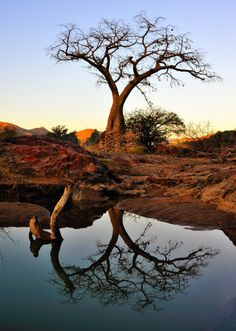 A beautiful African landscape