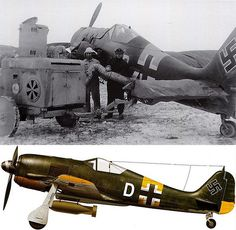 """This Fw 190A-5 of 4./JG 54 was coded """"White D"""" - from July 1943 to February 1944, 4. Staffel operated as fighter-bombers on the Northern Sector of the Eastern Front under the command of IV./JG 54"""