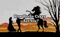 How horse crazy are you?  Take our Noble Outfitters horse quiz and find out!