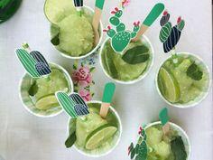 sorbetto-lime-cactus-partytude
