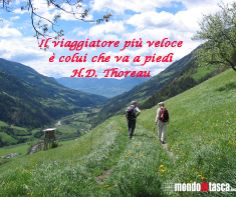 #aforismi #viaggio #cammino