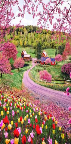 Woodstock is beautiful during the spring season . Woodstock is beautiful during the spring season . Beautiful Places To Travel, Wonderful Places, Cool Places To Visit, Beautiful World, Places To Go, Beautiful Farm, Amazing Places On Earth, Beautiful Eyes, Beautiful Things
