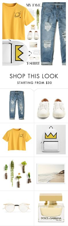 """My Fave T-shirt"" by aurorabvik ❤ liked on Polyvore featuring Hollister Co., Aquazzura, Gucci, Dolce&Gabbana, dolceandgabbana, hollister, gucci, riverdale and MyFaveTshirt"