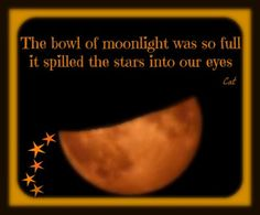 <3 The bowl of moonlight was so full it spilled the stars into our eyes.