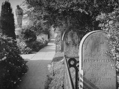 Cemetery of Mission Dolores Containing Headstones of Many Historical Figures from SF's Past