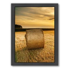 East Urban Home Hay Landscape Sun Nature Framed Photographic Print Size: