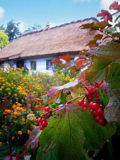 Novi Petrivtsi village, Ukraine,