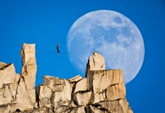 Photograph by Mikey Schaefer - Highlining at Cathedral Peak, Yosemite, California