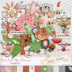 Owl Love You Forever : LouCee Creations  https://www.digitalscrapbookingstudio.com/personal-use/kits/owl-love-you-forever-page-kit/