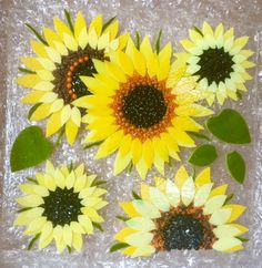 Sunflowers - how to
