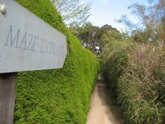 Entrance to maze