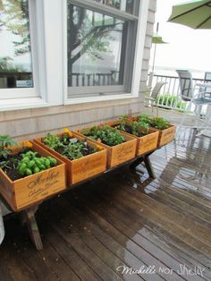 Don't have a suitable landscape for gardening? How about a container garden on your porch, balcony, or patio?